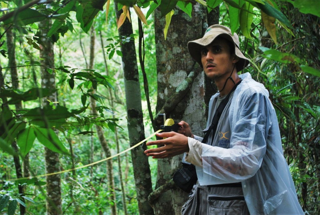 Forest monitoring is a critical aspect of all our work in reforestation