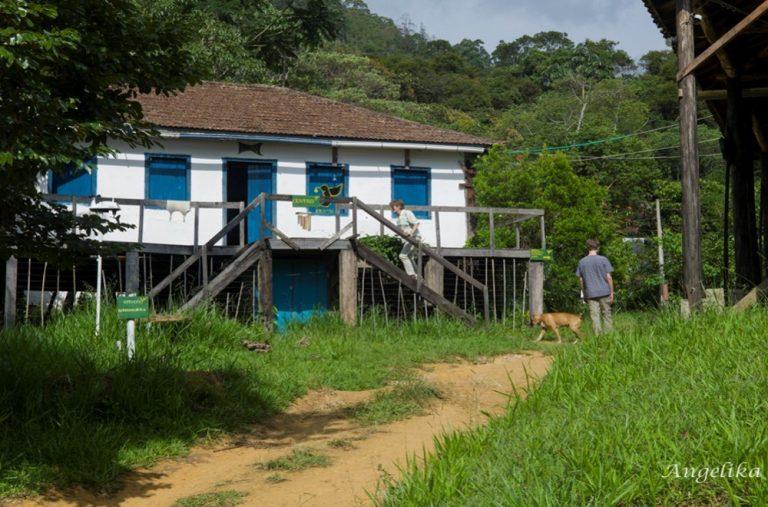 Iracambi Research Center circa 1999